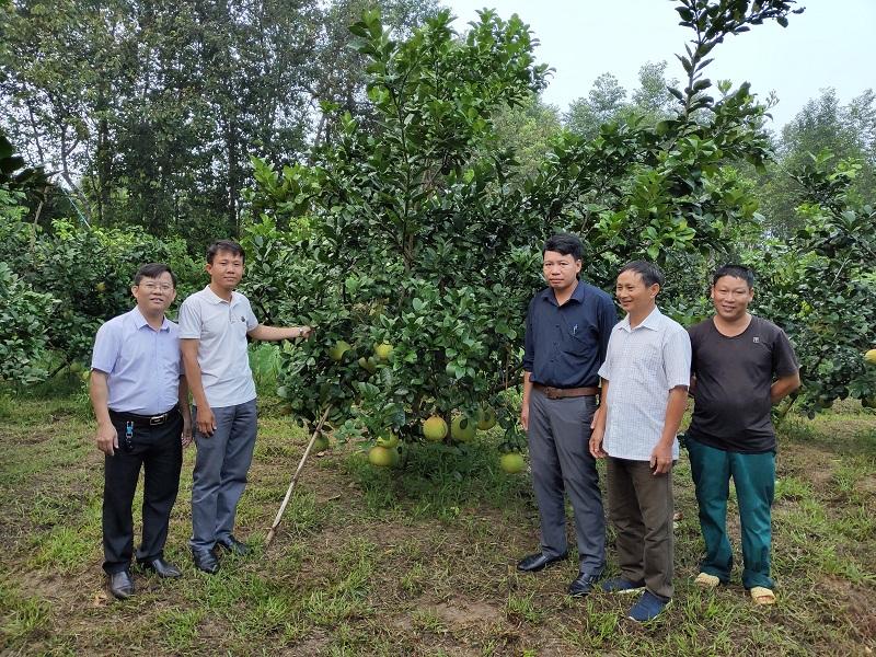 Chuyến khảo sát, lấy mẫu quả thực hiện việc nghiên cứu đề tài tại tỉnh Hà Tĩnh